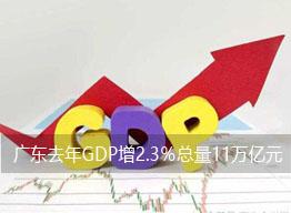 广东去年GDP增2.3%总量11万亿元全国第一